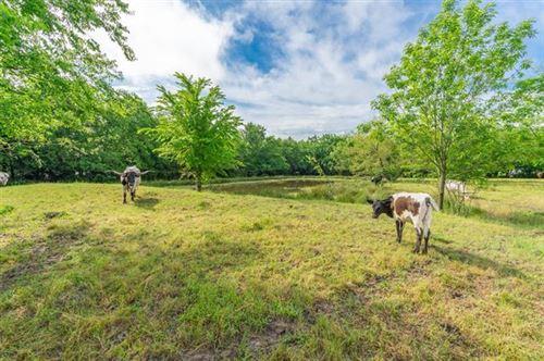 Photo of 423 County Road 2033, Klondike, TX 75448 (MLS # 14579997)