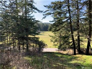 Photo of 0 Crow Valley Rd, Orcas Island, WA 98245 (MLS # 1433005)