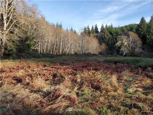 Photo of 9999 South Valley  Rd Lot 06, Naselle, WA 98638 (MLS # 1692010)