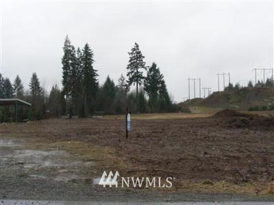 Photo of 41 TR W Hulbert Rd W, Shelton, WA 98584 (MLS # 962011)