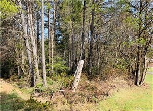 Photo of 111 E Road of Tralee, Shelton, WA 98584 (MLS # 1425018)