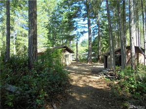 Photo of 1921 N Lake Cushman Rd, Hoodsport, WA 98548 (MLS # 1506022)