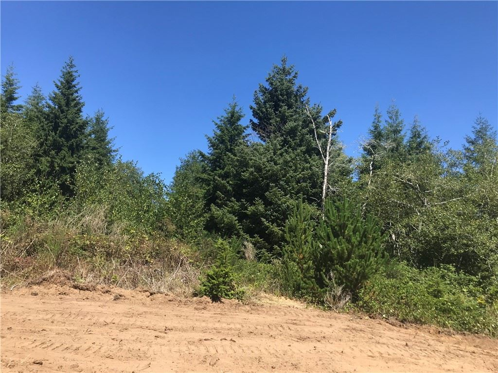 Photo of 2 155th #2, Long Beach, WA 98631 (MLS # 78029)