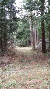 Photo of 0 XXX Pavey Blvd, Lopez Island, WA 98261 (MLS # 1161032)