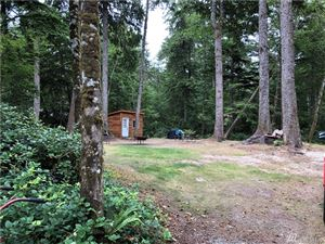Photo of 1404 320th Pl, Ocean Park, WA 98640 (MLS # 1517050)