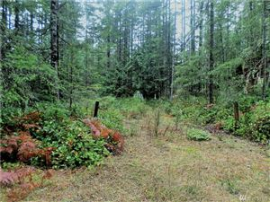 Photo of 50 N Duckabush Dr E Lot: 134, Hoodsport, WA 98548 (MLS # 1239072)