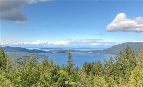 Photo of 749 Spring Hill Road, Orcas Island, WA 98245 (MLS # 1763073)