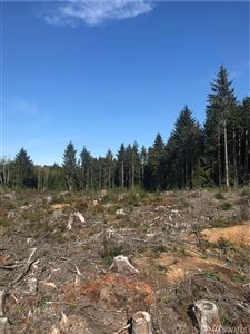 Photo of 0 South Bend Palix Rd, South Bend, WA 98586 (MLS # 1377112)