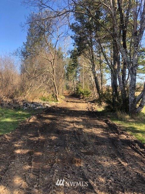 Photo of 297 T Lane, Ocean Park, WA 98640 (MLS # 1792162)