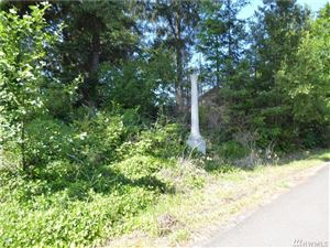 Photo of 1304 234th Place, Ocean Park, WA 98640 (MLS # 1430167)