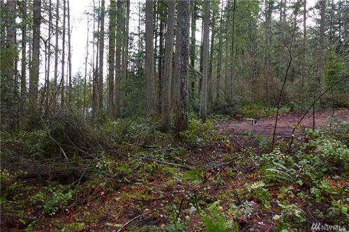 Photo of 49 Anderson Hill Rd SW, Port Orchard, WA 98367 (MLS # 1558183)