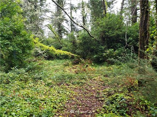 Photo of 99 247th Place, Ocean Park, WA 98640 (MLS # 1821195)
