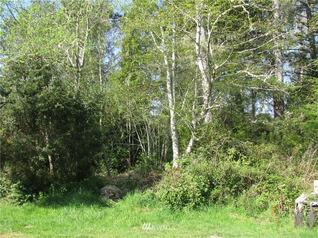 Photo of 222 Birch Place, Ocean Park, WA 98640 (MLS # 1592198)