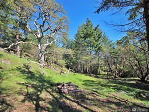 Tiny photo for 0 West Side Rd, San Juan Island, WA 98250 (MLS # 1444221)