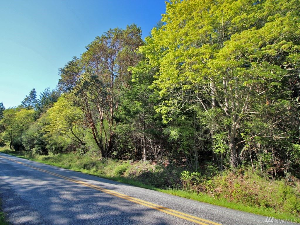 Photo for 0 West Side Rd, San Juan Island, WA 98250 (MLS # 1444221)