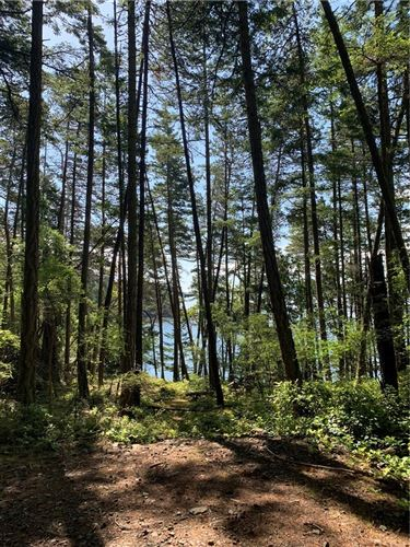 Photo of 0 Lot C2 Foster Point Rd, Orcas Island, WA 98280 (MLS # 182225)