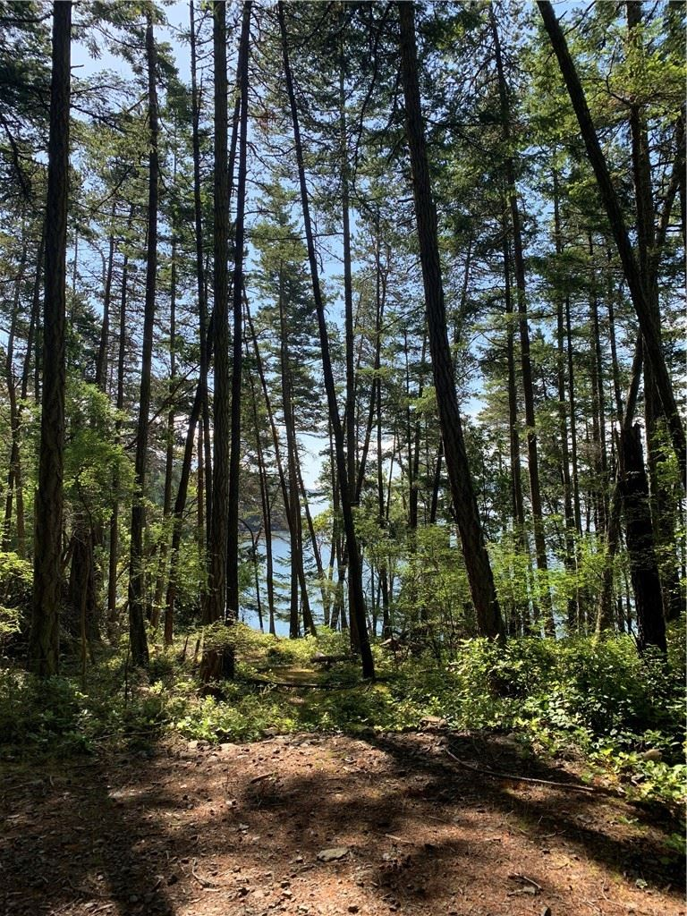 Photo for 0 Lot C2 Foster Point Rd, Orcas Island, WA 98280 (MLS # 182225)