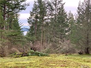 Photo of 0 xx Guthrie Cove Rd, Orcas Island, WA 98245 (MLS # 1121226)