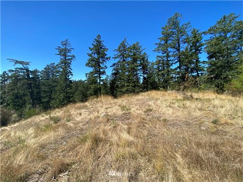 Photo of 0 Victorian Valley Dr, Orcas Island, WA 98280 (MLS # 1666231)