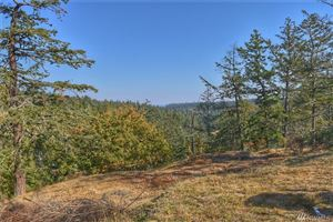 Photo of 0 TBD Orcas Hill Rd, Orcas Island, WA 98280 (MLS # 1409236)