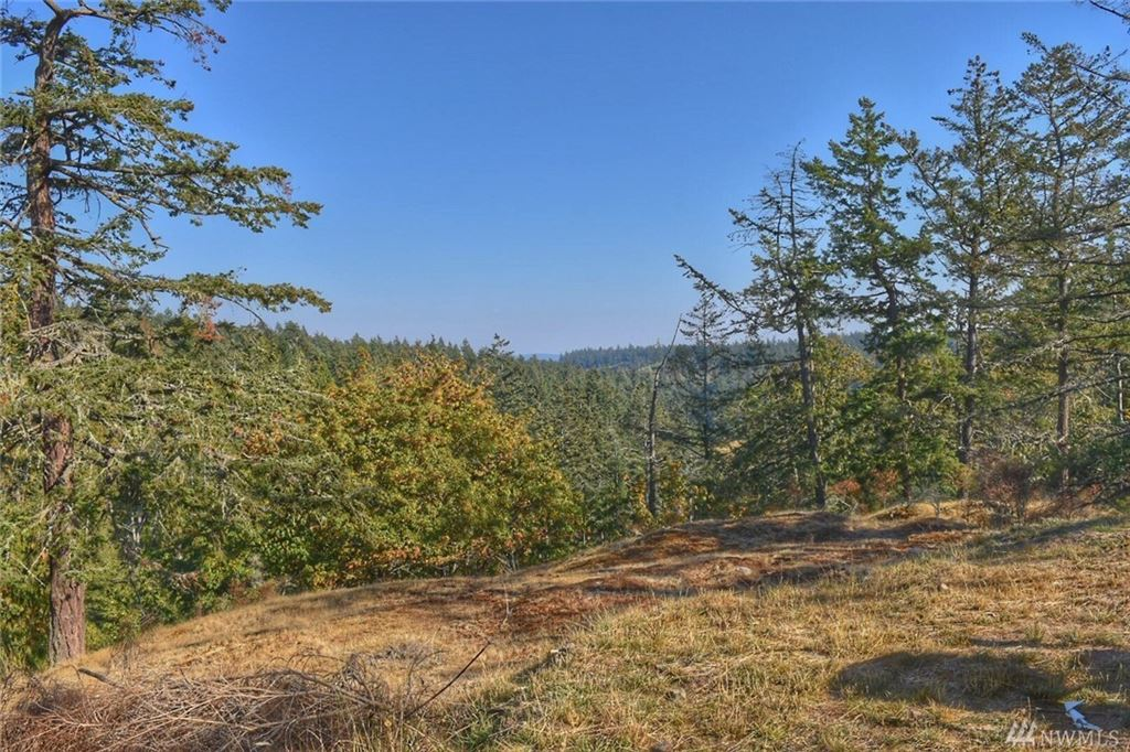Photo for 0 TBD Orcas Hill Rd, Orcas Island, WA 98280 (MLS # 1409236)