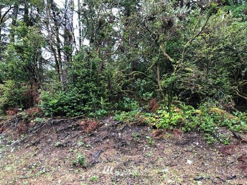Photo of 27500 Approx U St, Ocean Park, WA 98640 (MLS # 1354243)