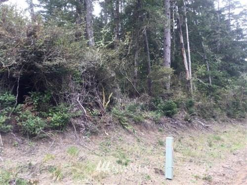 Photo of 27710 approx U St, Ocean Park, WA 98640 (MLS # 1354247)