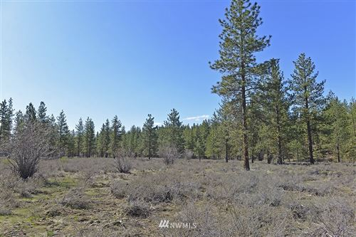 Photo of 0 Rabbit Hutch Road, Winthrop, WA 98862 (MLS # 1757259)