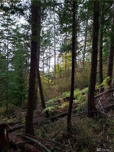 Photo of 0 XXX Point Lawrence Rd, Orcas Island, WA 98279 (MLS # 1520272)