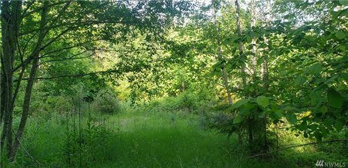 Photo of 0 Maple Lane, Lilliwaup, WA 98555 (MLS # 1362299)
