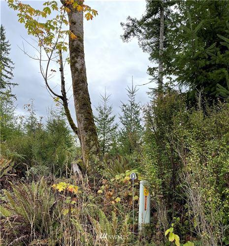 Photo of 0 NE 91st Way, Carnation, WA 98014 (MLS # 1850312)
