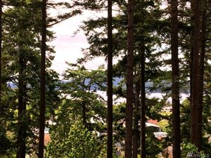Tiny photo for 36 52 and 58 Victory Lane, Orcas Island, WA 98245 (MLS # 1459322)