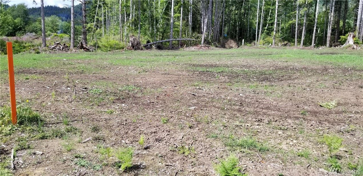 Photo of 0 State Route 4   lot 2, Naselle, WA 98638 (MLS # 1615324)