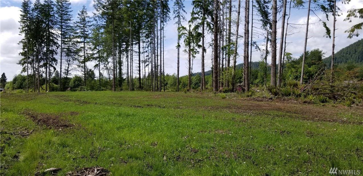 Photo of 0 State Rt  4   lot 1, Naselle, WA 98638 (MLS # 1615326)