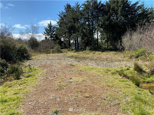 Photo of 147 Gull Street NW, Ocean Shores, WA 98569 (MLS # 1748333)