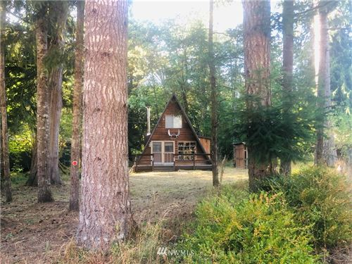 Photo of 119 Slalom Way, Packwood, WA 98361 (MLS # 1666346)