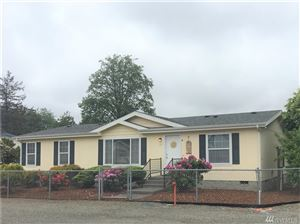 Photo of 317 Sid Snyder Dr E, Long Beach, WA 98631 (MLS # 1461365)