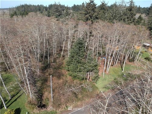 Photo of 1805 324th Place, Ocean Park, WA 98640 (MLS # 1751370)