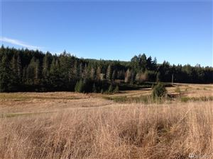 Photo of 0 Lot 3 Eugenia Place Lot: 3, Allyn, WA 98524 (MLS # 1235377)