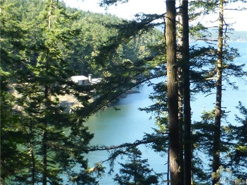 Photo of 814 Hunter Bay Road, Lopez Island, WA 98261 (MLS # 1586377)
