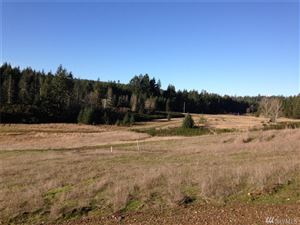 Photo of 0 Lot 4 Eugenia Place Lot: 4, Allyn, WA 98524 (MLS # 1235380)