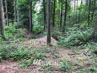 Photo for 38360 Vista Key Dr NE, Hansville, WA 98340 (MLS # 1622385)