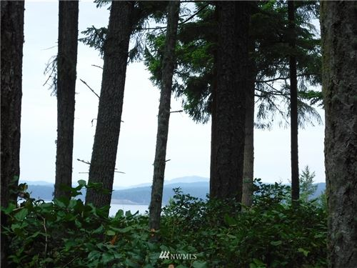 Photo of 275 Valley View Road, Lopez Island, WA 98261 (MLS # 1623395)