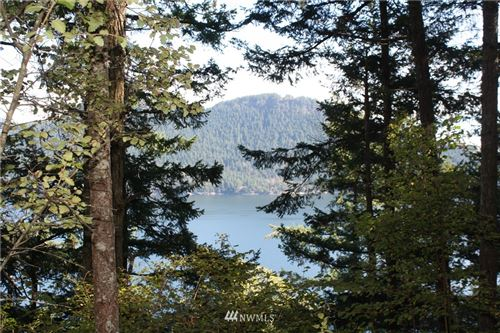 Photo of 0 Diamond Hill Road, Orcas Island, WA 98245 (MLS # 1363415)
