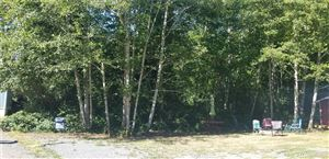 Photo of 2800 225th Place Lot: 4, Ocean Park, WA 98640 (MLS # 1324418)