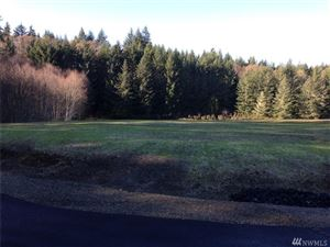 Photo of 0 Lot 10 Eugenia Place Lot: 10, Allyn, WA 98524 (MLS # 1235434)
