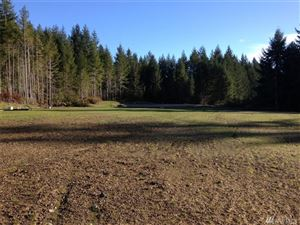 Photo of 0 Lot 13 Eugenia Place Lot: 13, Allyn, WA 98524 (MLS # 1235446)