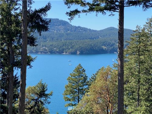 Photo of 0 Palisades Drive, Orcas Island, WA 98245 (MLS # 1756447)