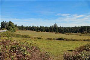 Photo of 4543 Beaverton Valley Rd, San Juan Island, WA 98250 (MLS # 546451)