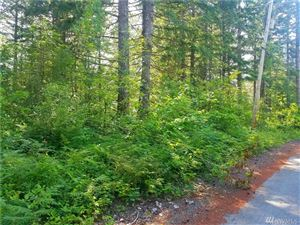 Photo of 0 Timberline Dr Lot: 74 & 76, Packwood, WA 98361 (MLS # 1312457)